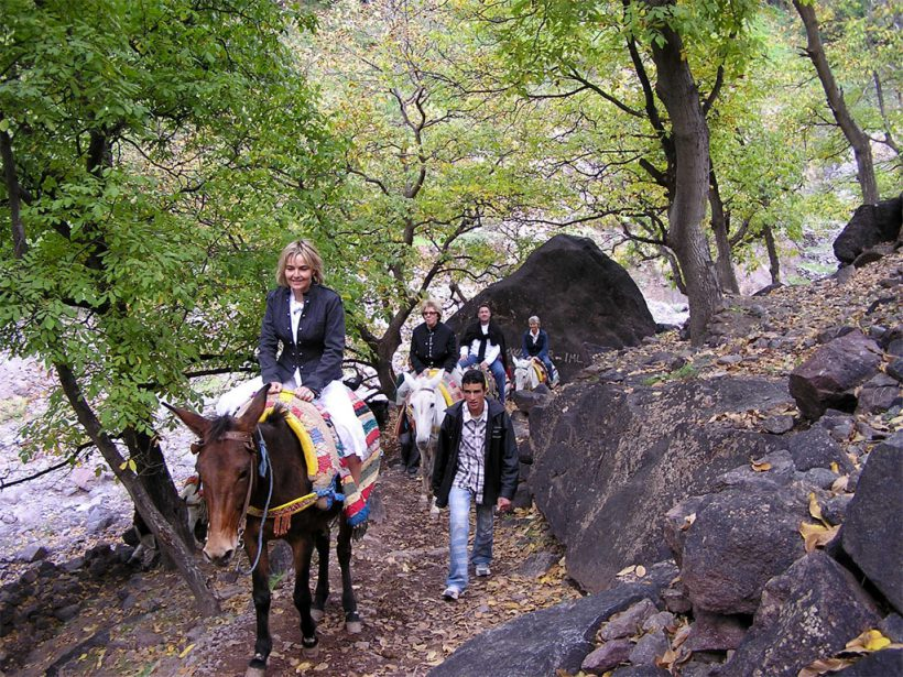 Imlil-excursion-