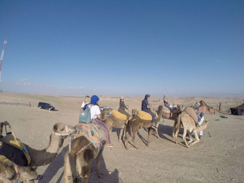 agafay deset camel ride 1 (Copier)