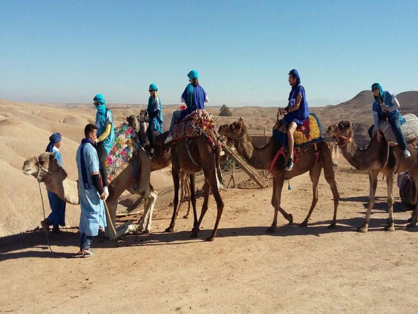 balade-dromadaire-desert-agafay (Copier)