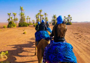 marrakech-camel-ride-at-the-palm-grove-5 (Copier)